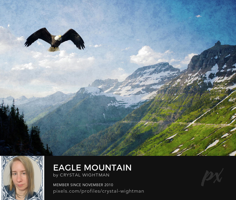 A mountain landscape in Glacier National Park with a eagle flying.