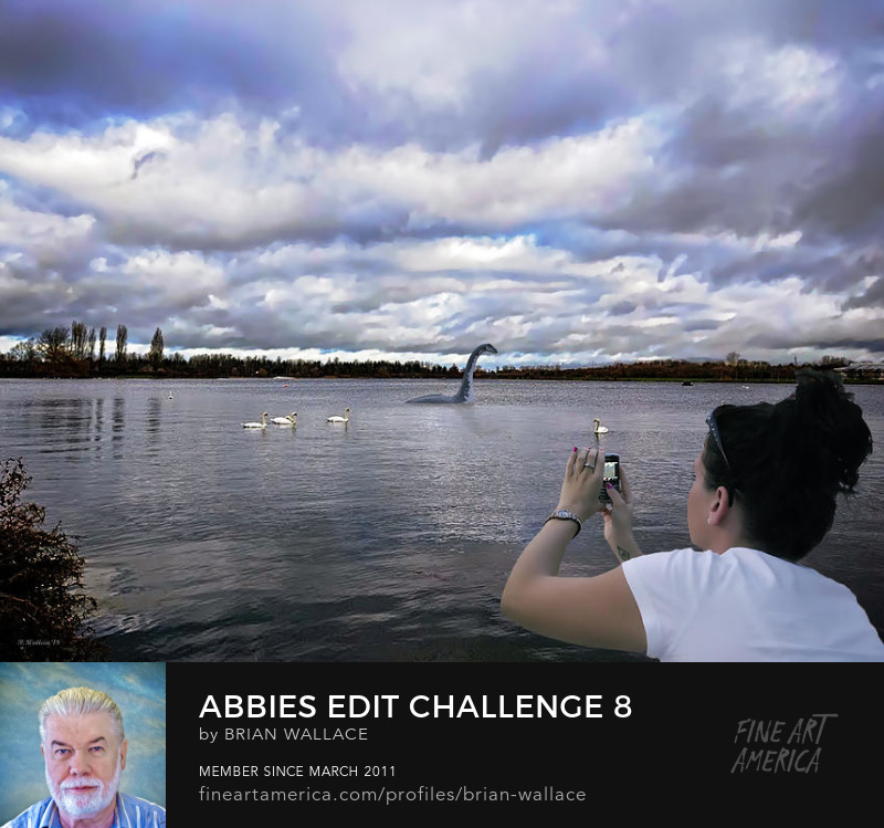 Abbies Edit Challenge 8 by Brian Wallace