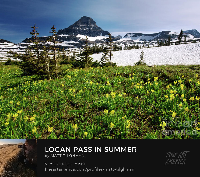 Glacier Montana Logan Pass Art Prints