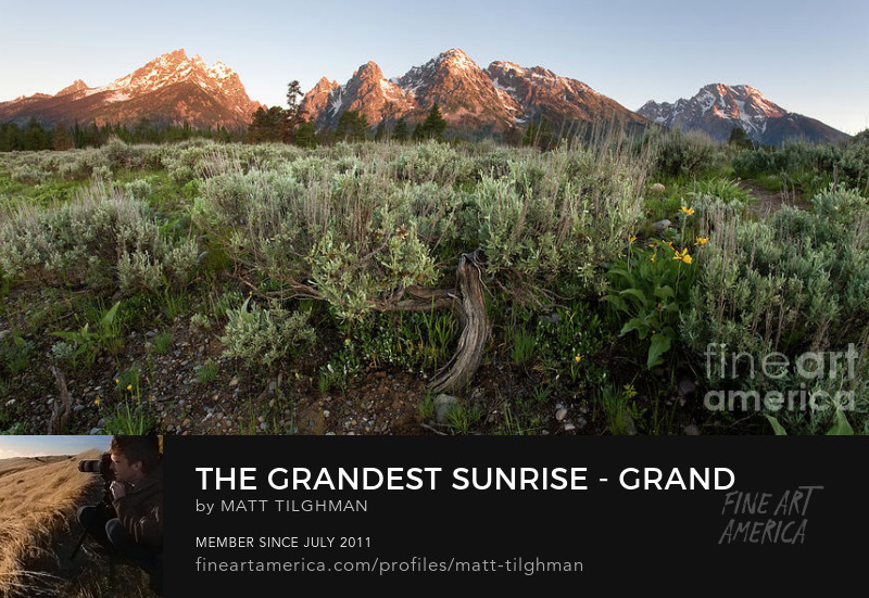 Grand Tetons Wyoming Art Online
