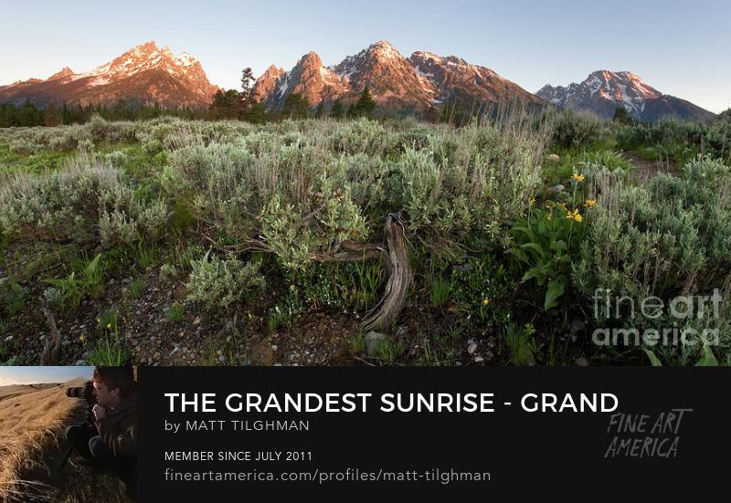 Grand Tetons Wyoming Art Online