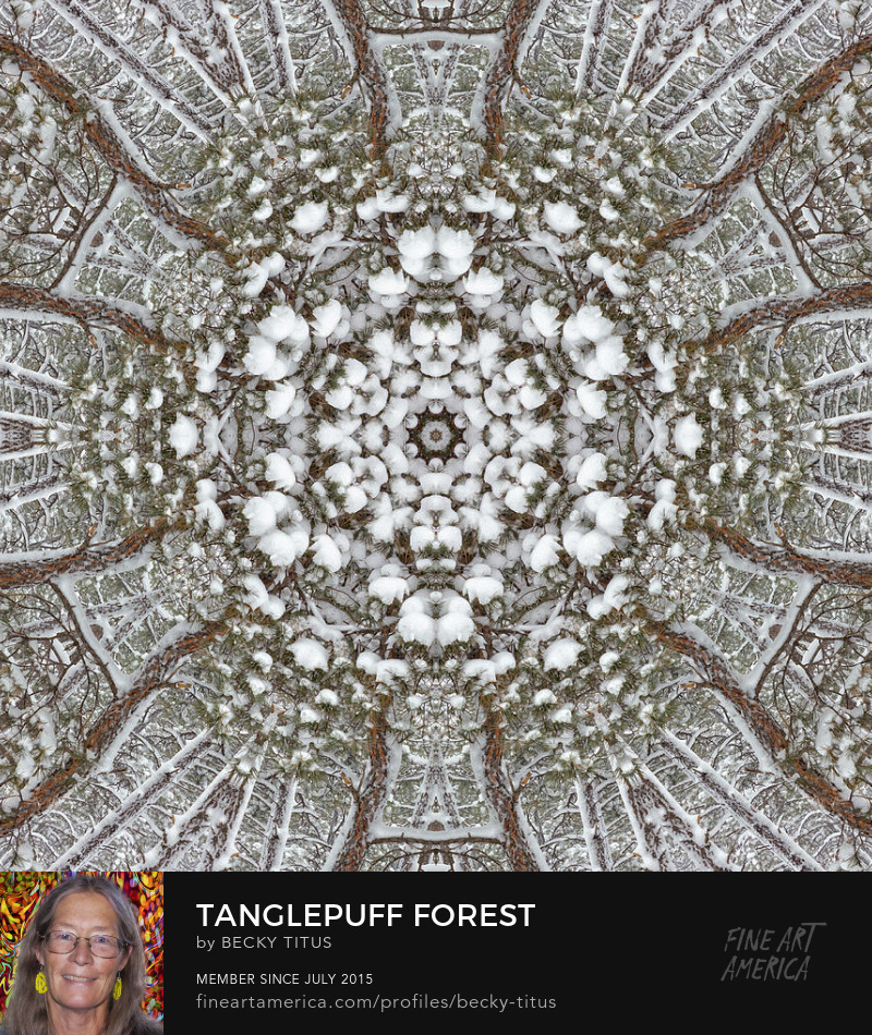 Tanglepuff Forest by Becky Titus