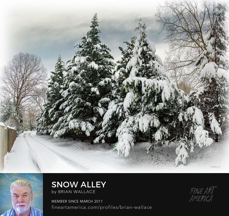 Snow Alley by Brian Wallace