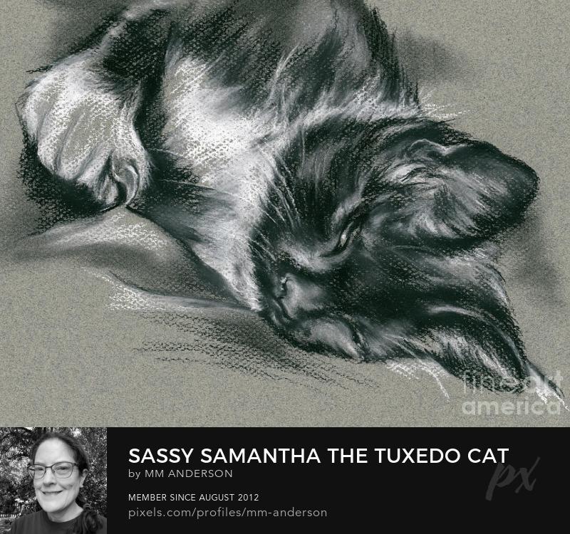 Pet Portrait Art Prints