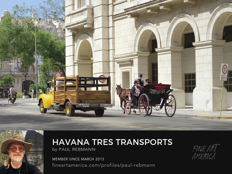 View online purchase options for Havana Tres Transports by Paul Rebmann