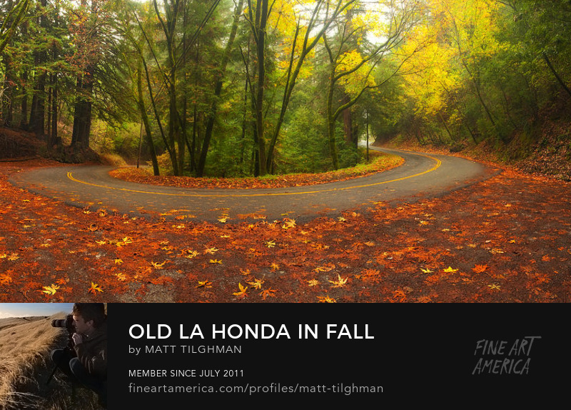 Old La Honda Road in Fall Photography Prints