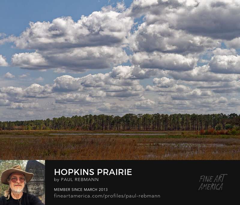 View online purchase options for Hopkins Prairie by Paul Rebmann