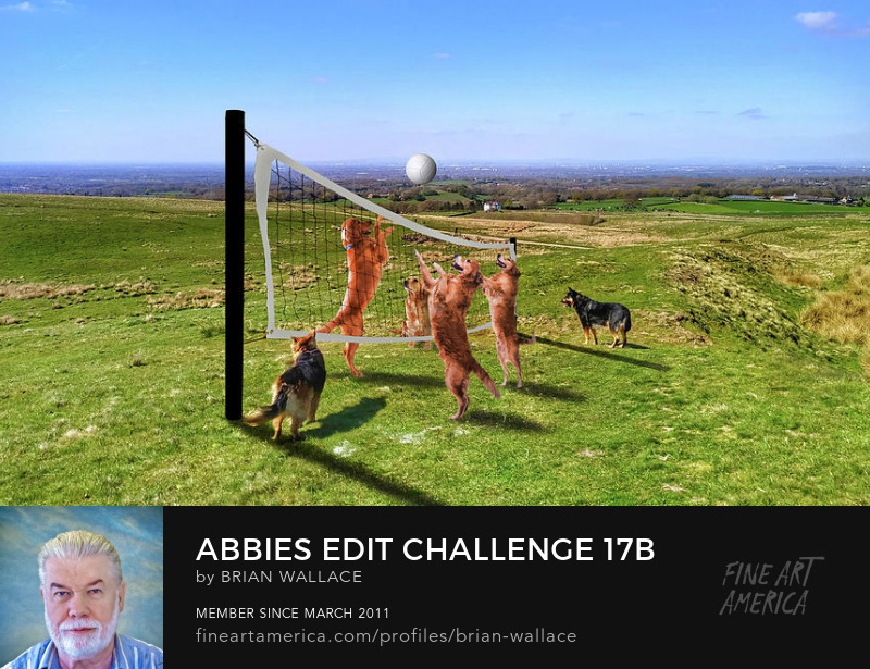Abbies Edit Challenge 17b by Brian Wallace