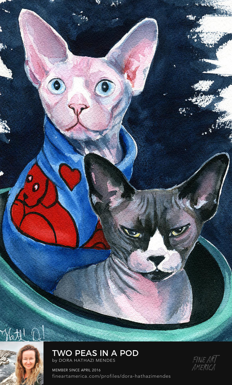 Two Peas In A Pod watercolor Sphynx cat painting by Dora Hathazi Mendes