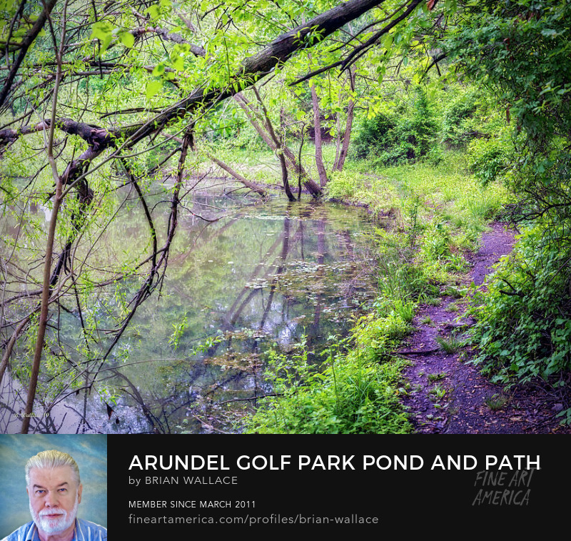 Arundel Park Pond And Path by Brian Wallace