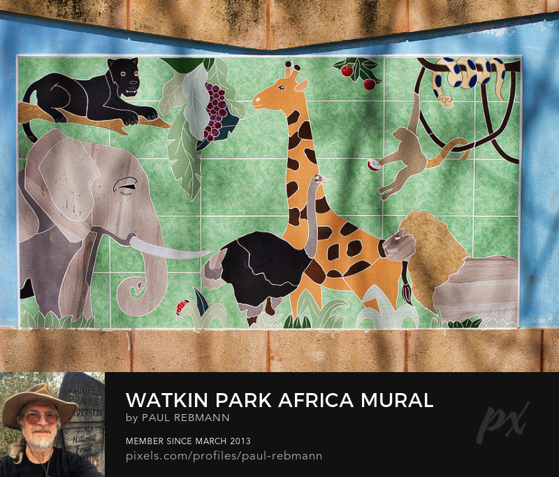 View online purchase options for Watkin Park Africa Mural by Paul Rebmann