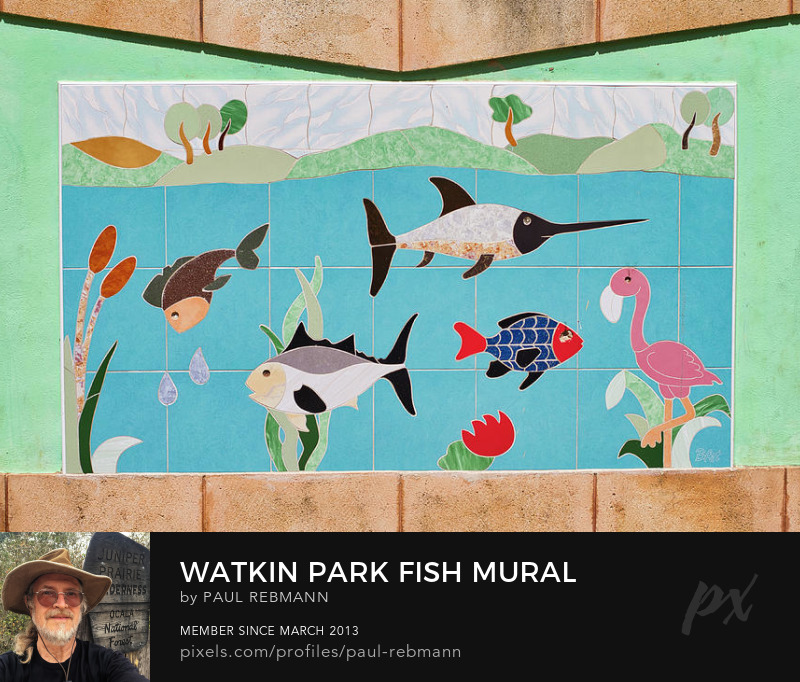 View online purchase options for Watkin Park Fish Mural by Paul Rebmann