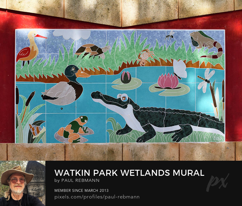 View online purchase options for Watkin Park Wetland Mural by Paul Rebmann