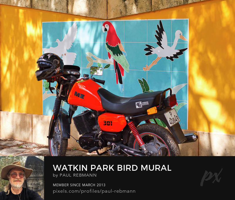 View online purchase options for Watkin Park Bird Mural and Motorcycle by Paul Rebmann
