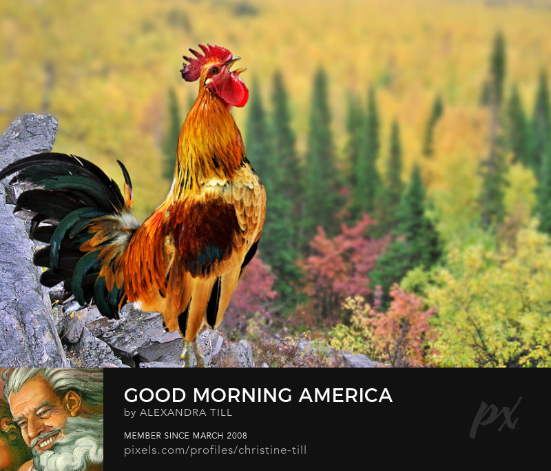 Sell Good Morning America Art Prints
