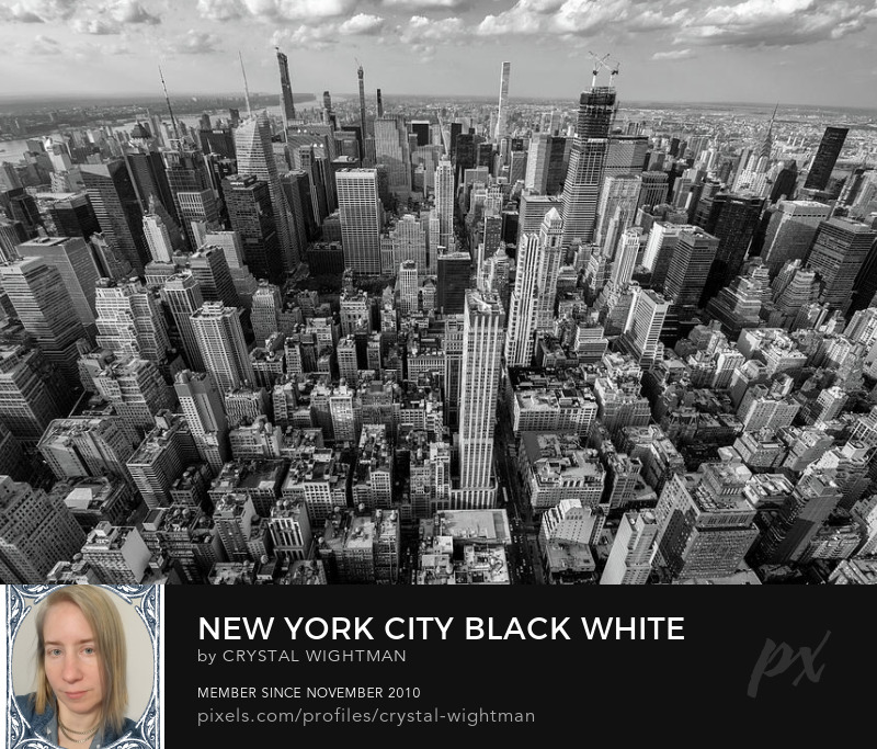An architecture landscape of New York City in black and white.