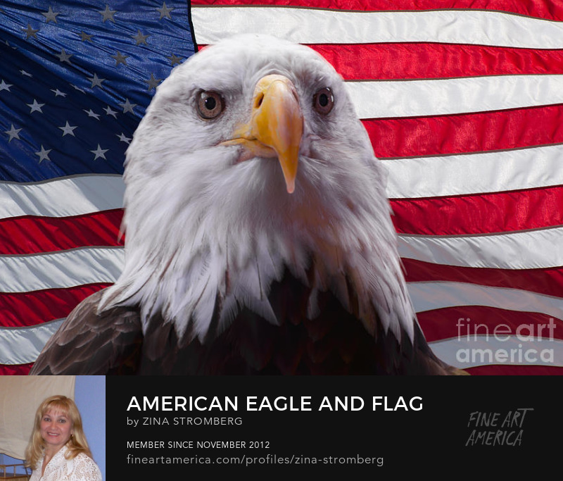 American Bald eagle and Flag by Zina Stromberg
