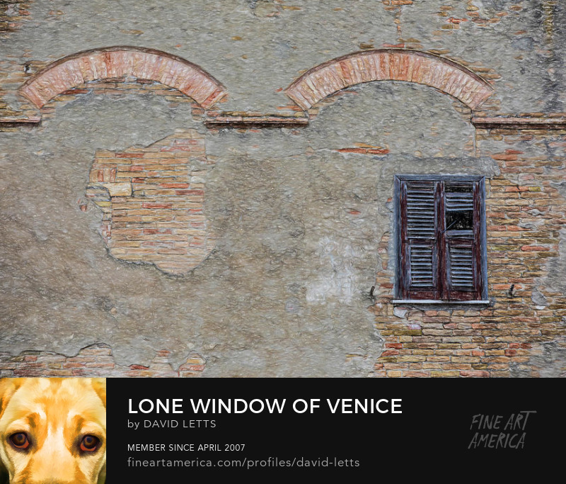 Lone Window of Venice Print for Sale by David Letts