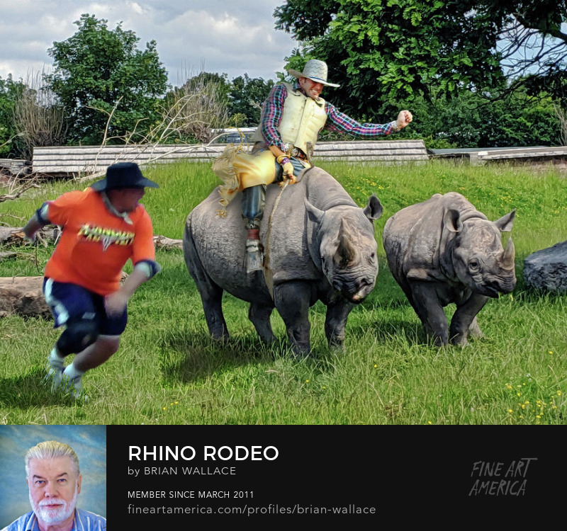 Rhino Rodeo edited by Brian Wallace