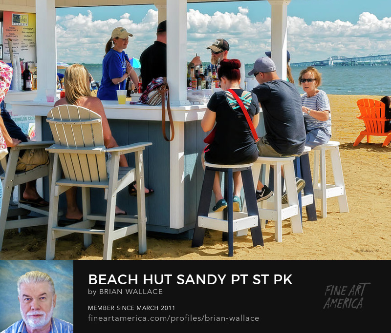 Beach Hut Sandy Pt St Pk by Brian Wallace