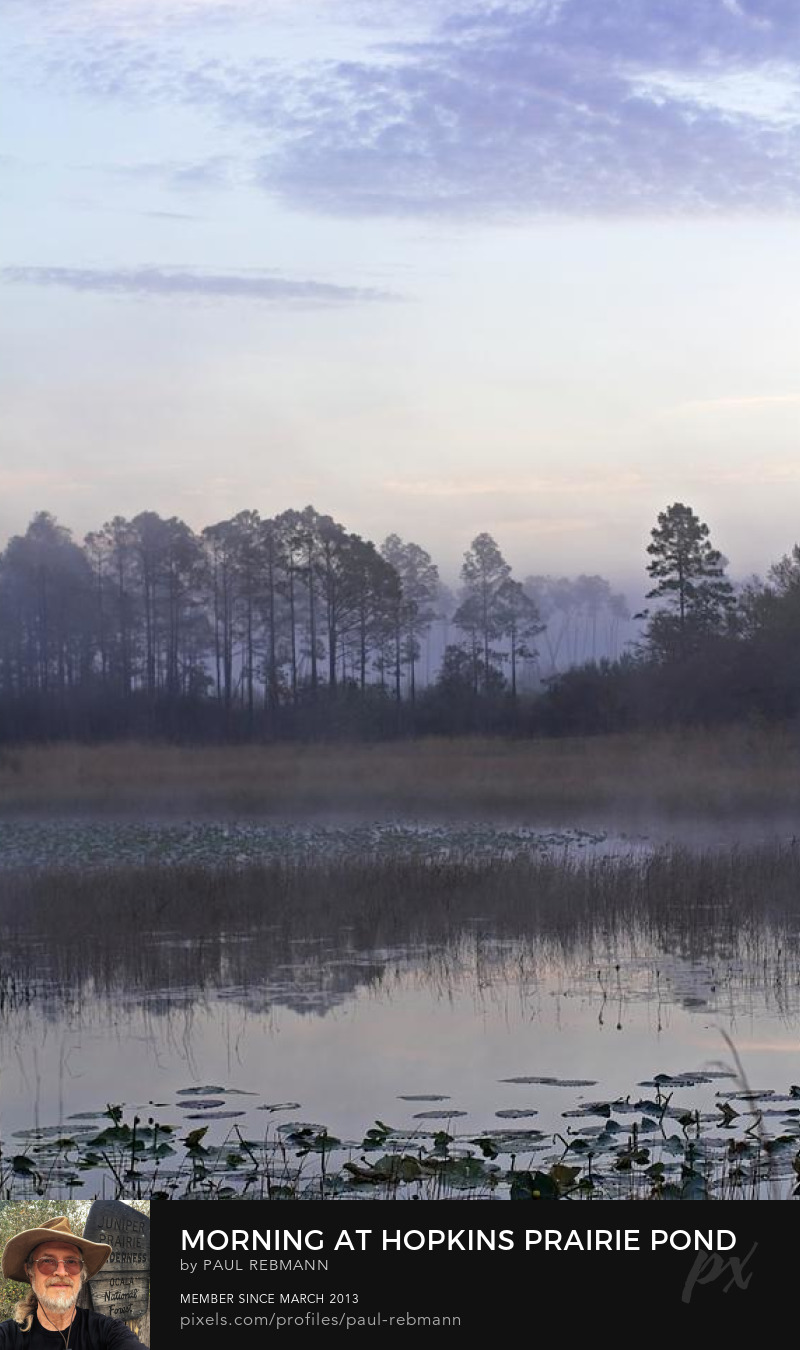 View online purchase options for Morning at Hopkins Prairie Pond by Paul Rebmann