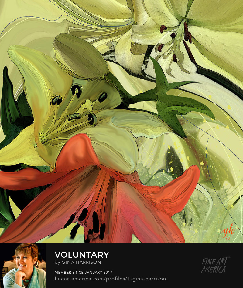 Voluntary by Gina Harrison