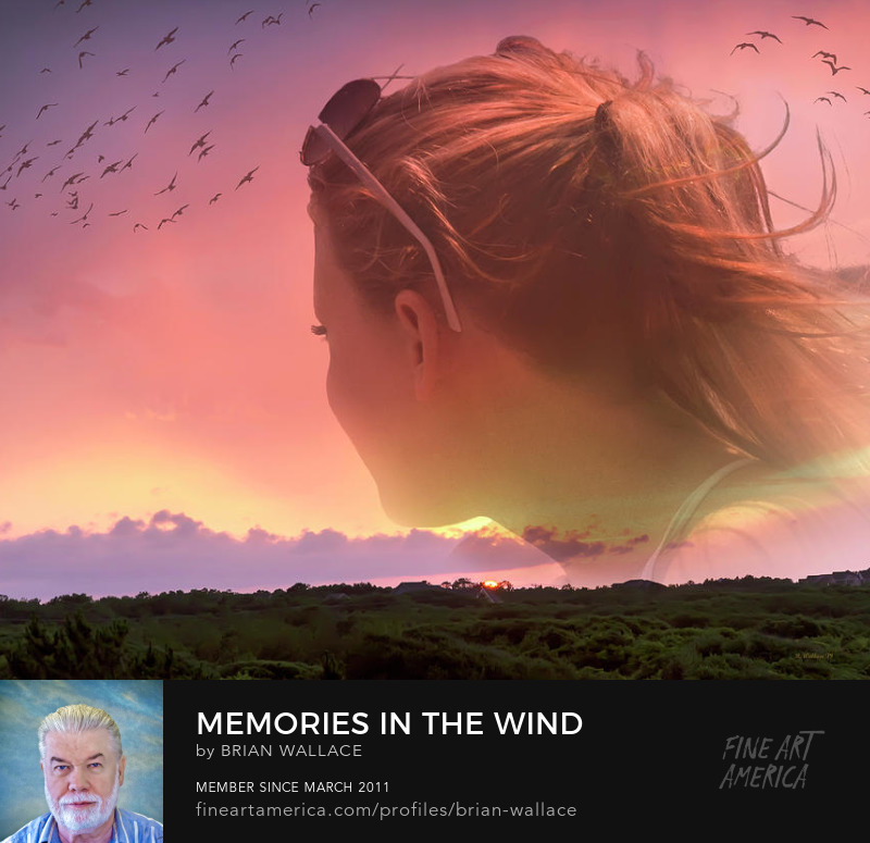Memories In The Wind by Brian Wallace