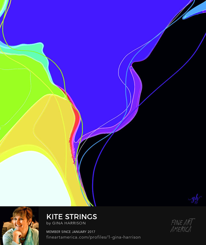 Kite Strings abstract by Gina Harrison