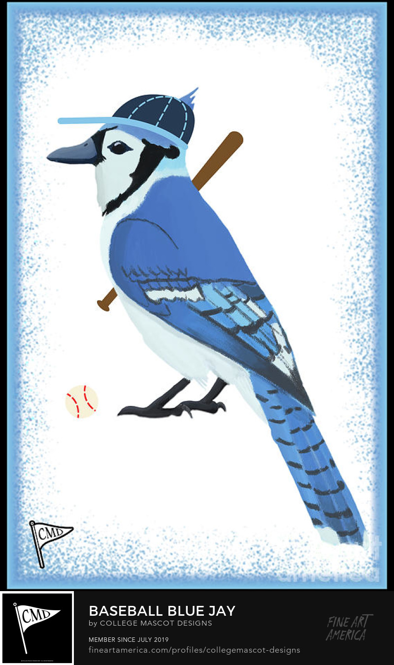 Baseball Blue Jay by College Mascot Designs