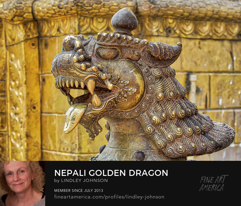 Golden Dragon Kathmandu Nepal Lindley Johnson