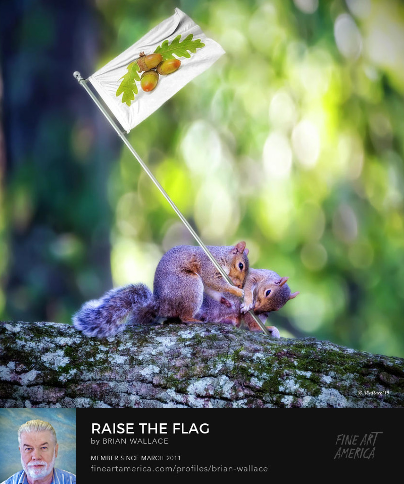 Raise The Flag by Brian Wallace