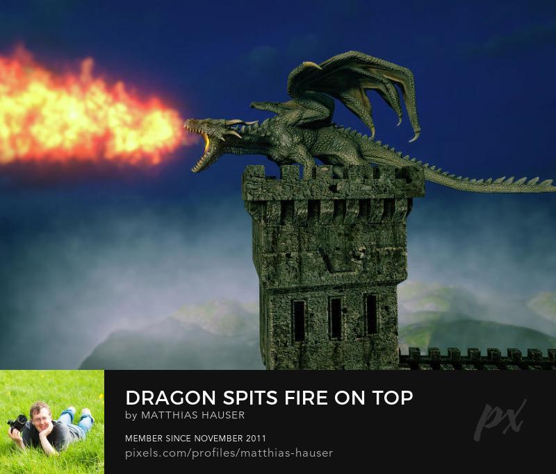 Dragon Art Prints