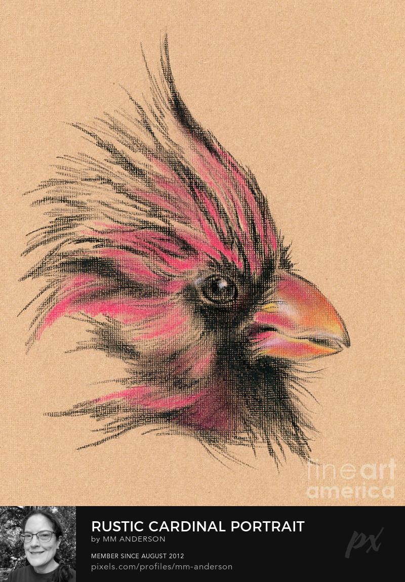 Cardinal Bird Art Prints Online
