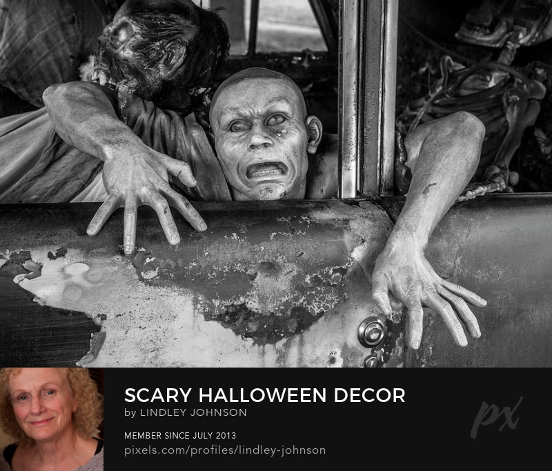 Scary Holloween Decor black white photograph by Lindey Johnson