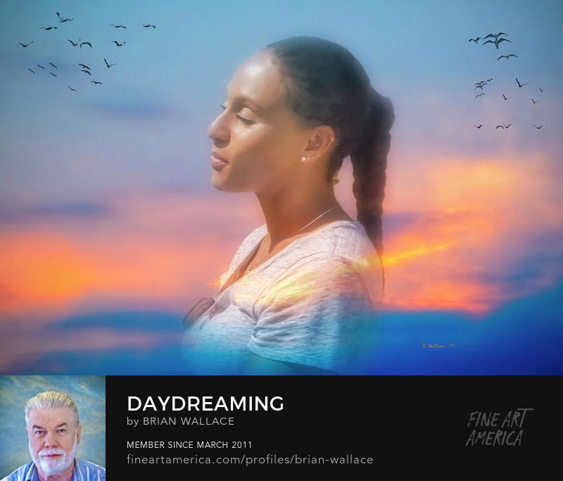 Daydreaming by Brian Wallace