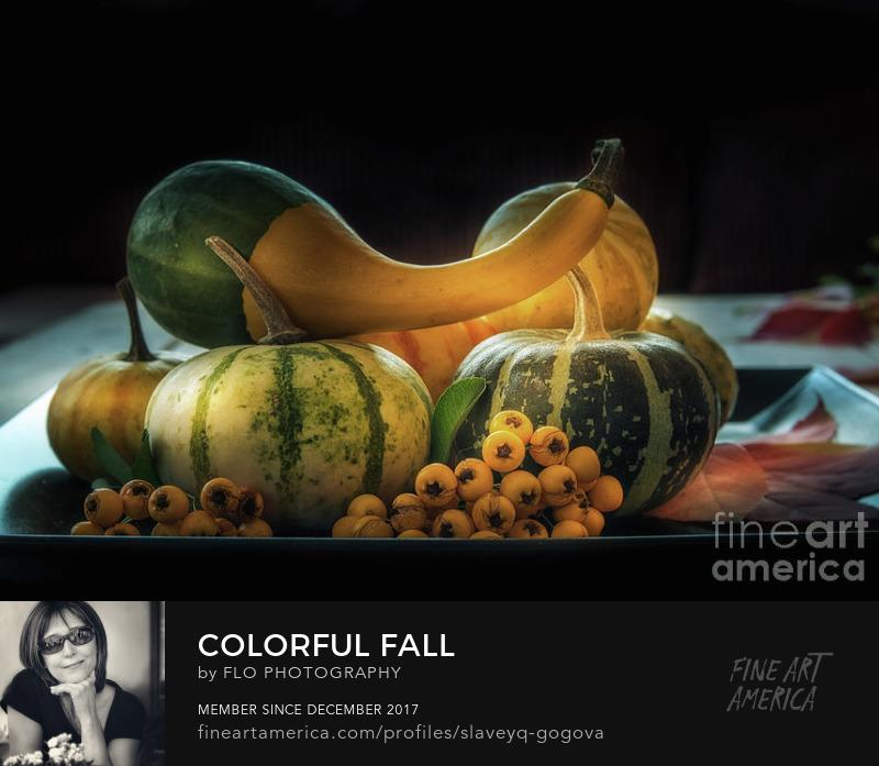 colorful fall still life Flo Photography Art Prints