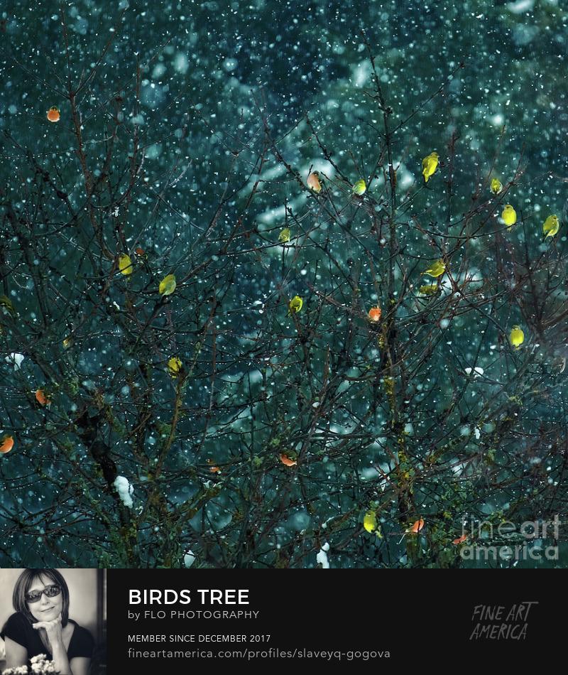 birds tree Flo Photography Art Prints