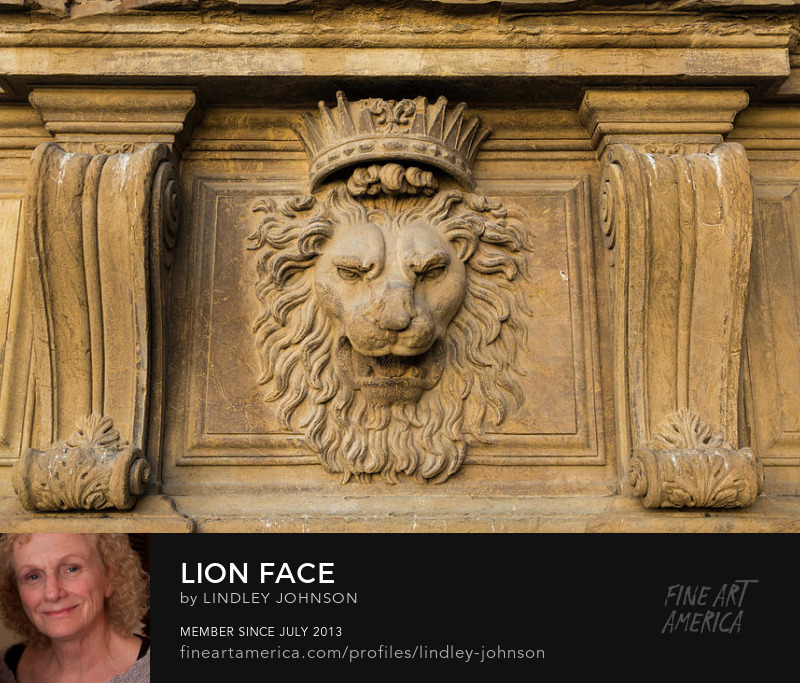 lion face florence italy lindley johnson