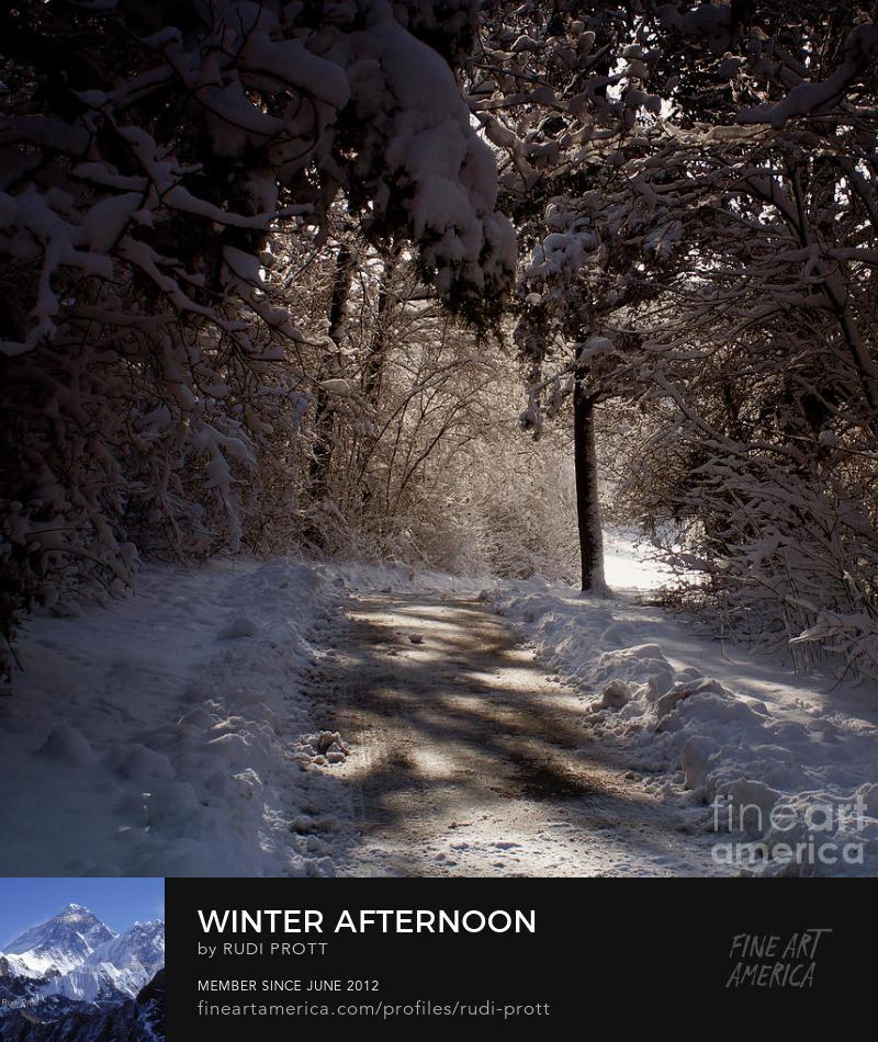 winter wonderland by Rudi Prott