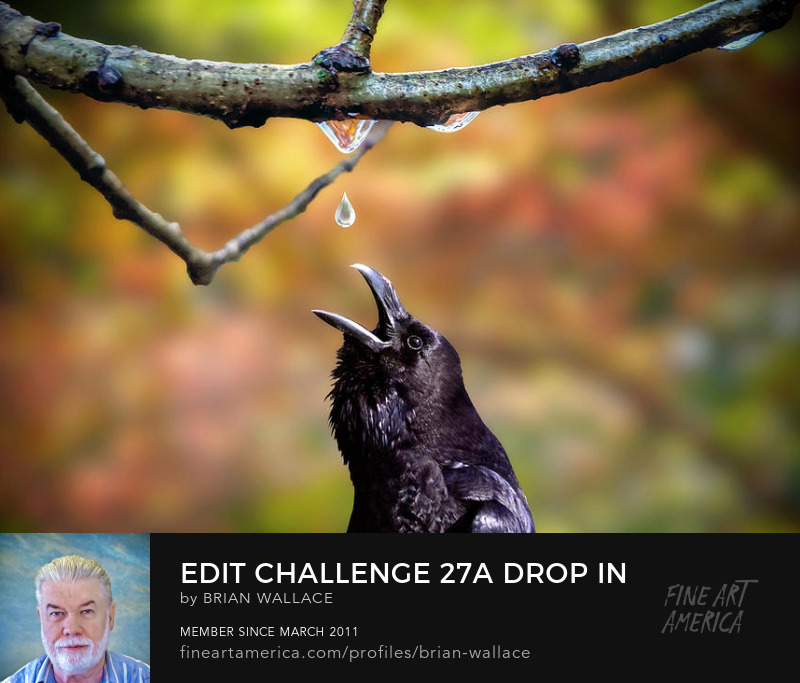 Edit Challenge 27a Drop In by Brian Wallace