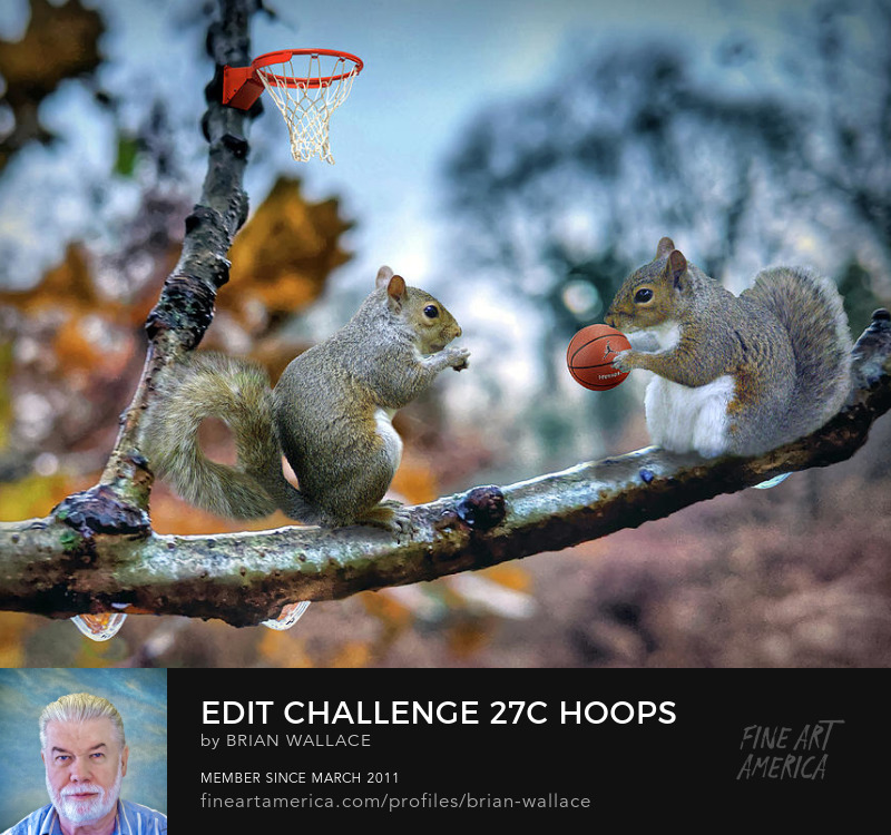 Edit Challenge 27c Hoops by Brian Wallace