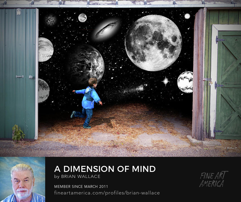 A Dimension Of Mind by Brian Wallace