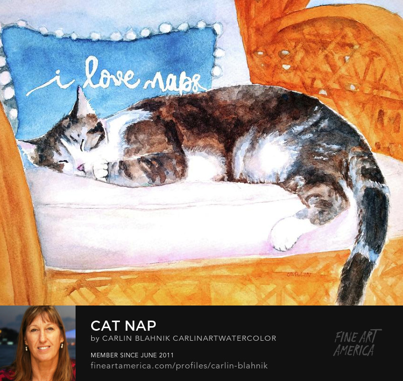 Cute Cat Nap Watercolor Painting Print by Carlin Blahnik