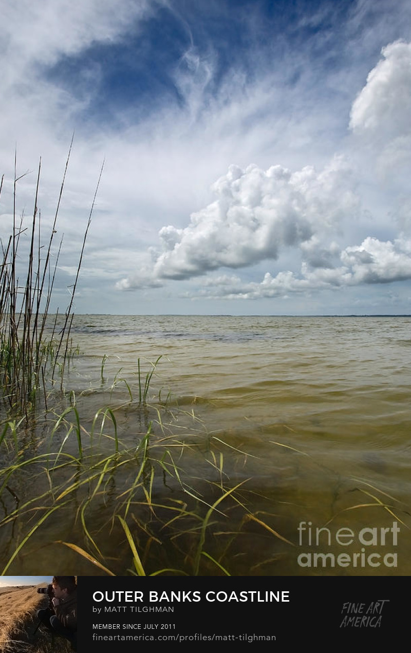 Outer Banks Estuary Art Prints