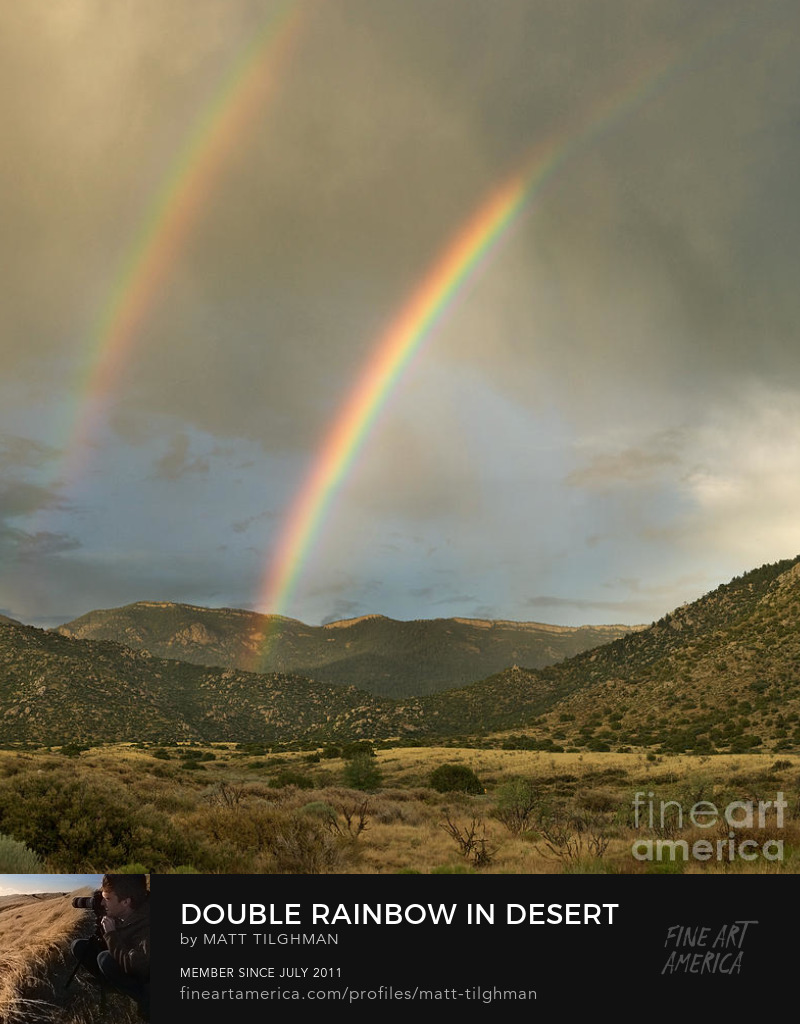 Desert Double Rainbow Photography Prints