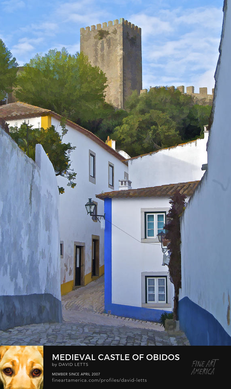 Medieval Castle of Obidos Portugal photograph for sale by David Letts