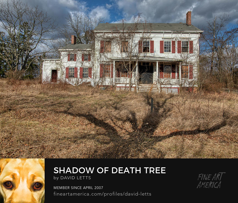 Ghost House Fine Art Print for Sale by David Letts