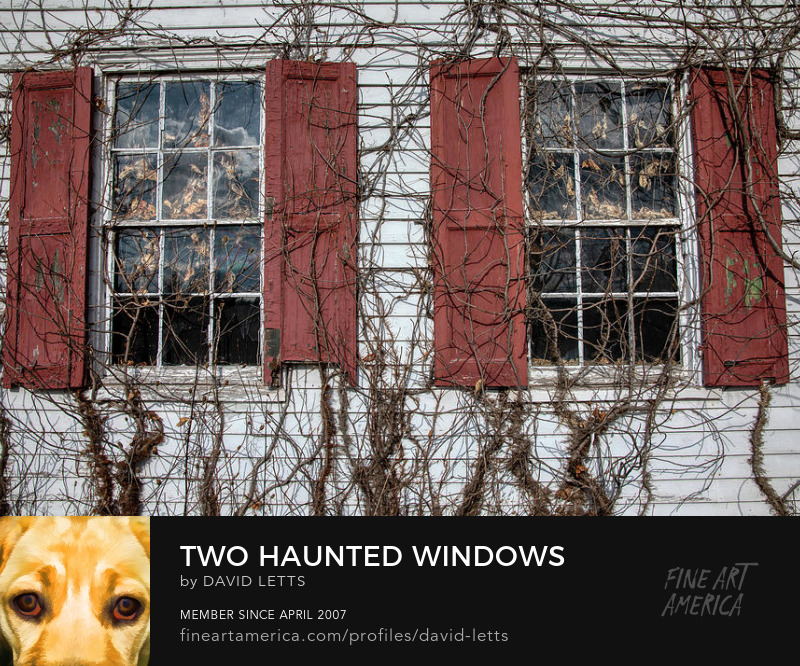 Haunted Windows Fine Art Print for Sale by David Letts