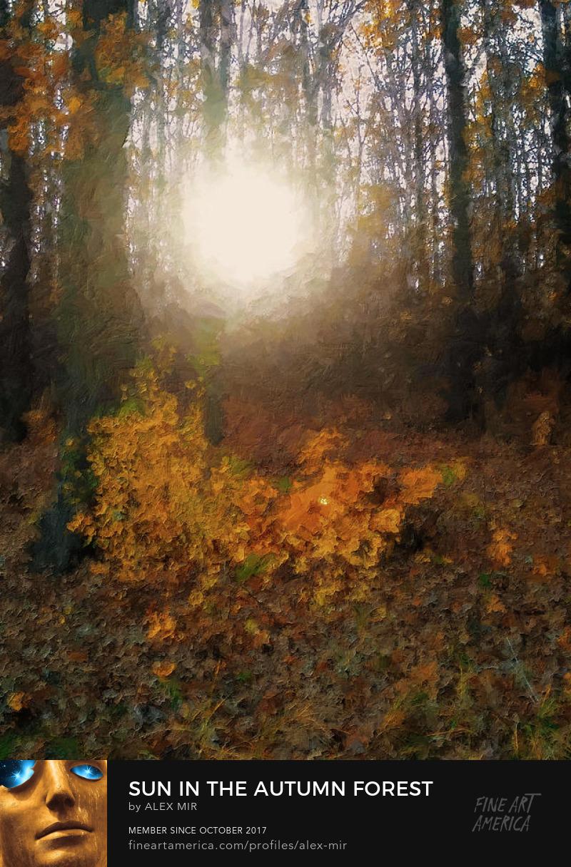 Buy Sun In The Autumn Forest Art Print