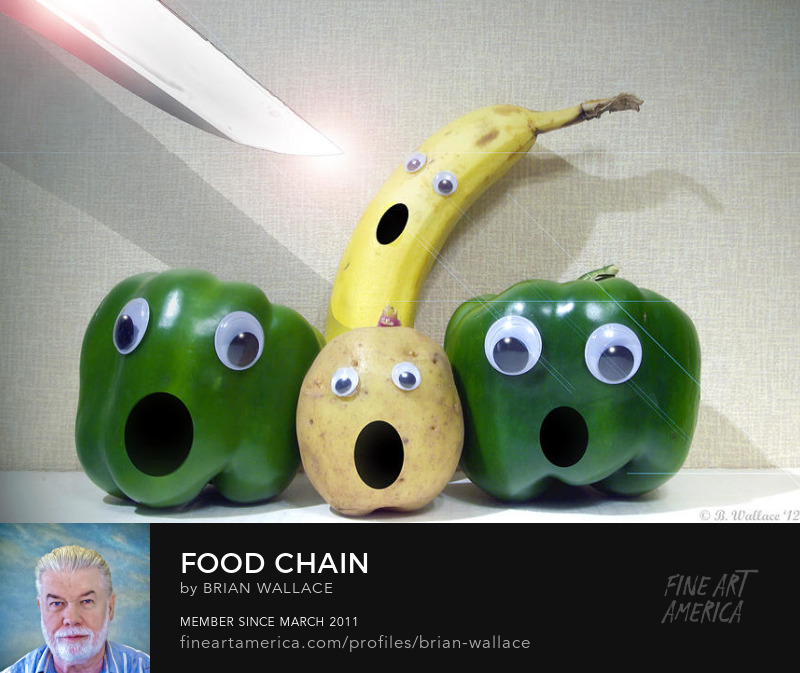 Food Chain by Brian Wallace